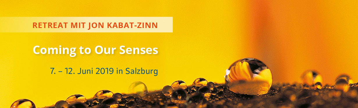 Retreat with Jon Kabat-Zinn in Salzburg
